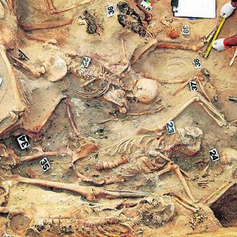 1382. Hallan en el cementerio la mayor fosa común del franquismo en la provincia