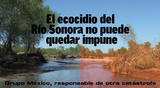 1482. Mexico's 'worst environmental disaster in modern times'