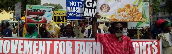1618. GMO products banned in Ghana
