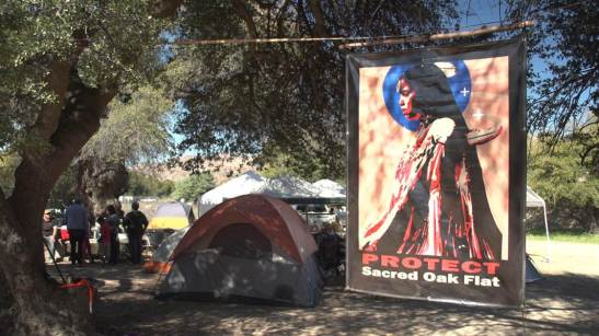 1694. Apache tribe occupies sacred land to be destroyed by mine, refusing to leave