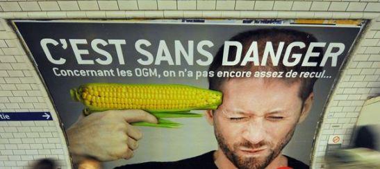 1730. L'Europe autorise les OGM de Monsanto