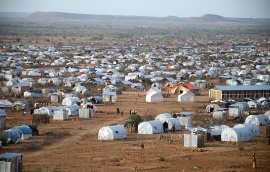 2019. Más de 50 millones de desplazados forzados en 2014