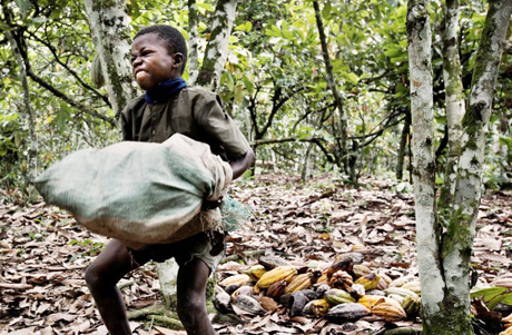 3046. Hershey, Nestle and Mars have been using child slaves to make your chocolate. See for yourself.